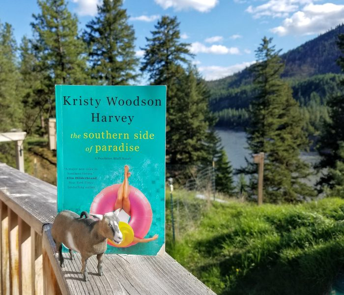 The Southern Side of Paradise by Kristy Woodson Harvey – Book Review