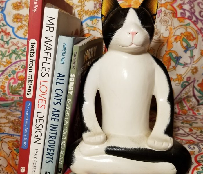 Books for Cat Lovers – Gift Idea