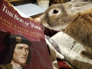 bunny nibbling on This Son of York