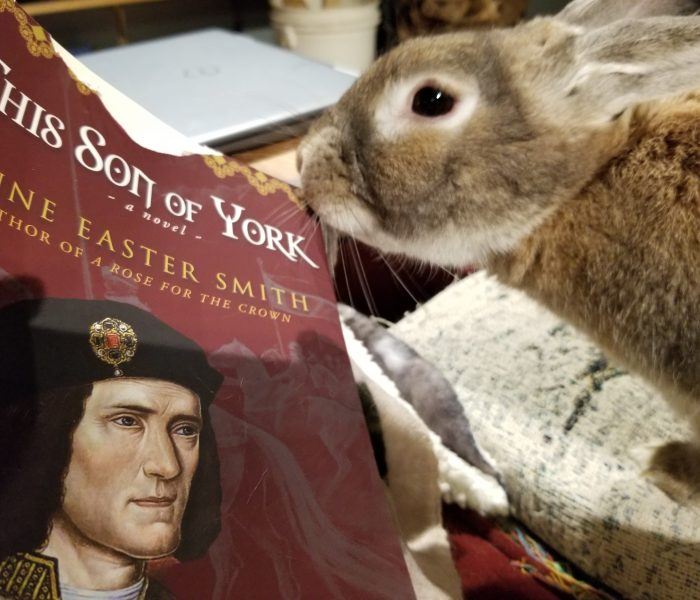 This Son of York by Anne Easter Smith – Blog Tour and Book Review with a Giveaway