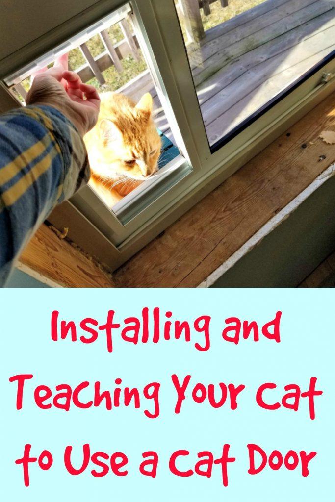 install cat door