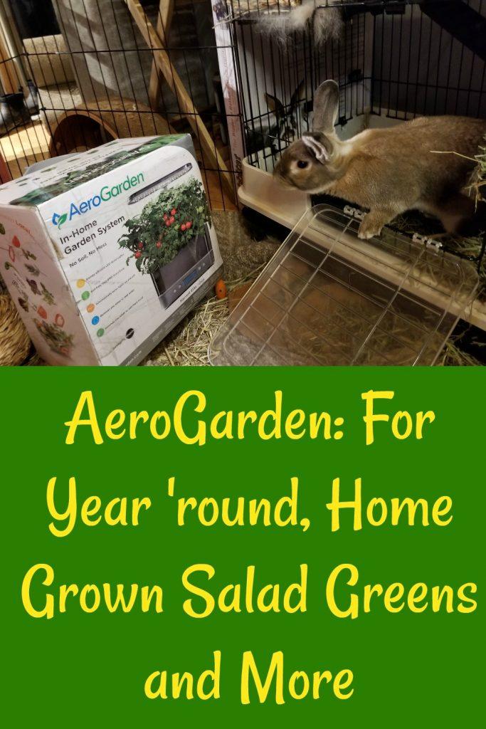 Aerogarden Grows salad greens for rabbits