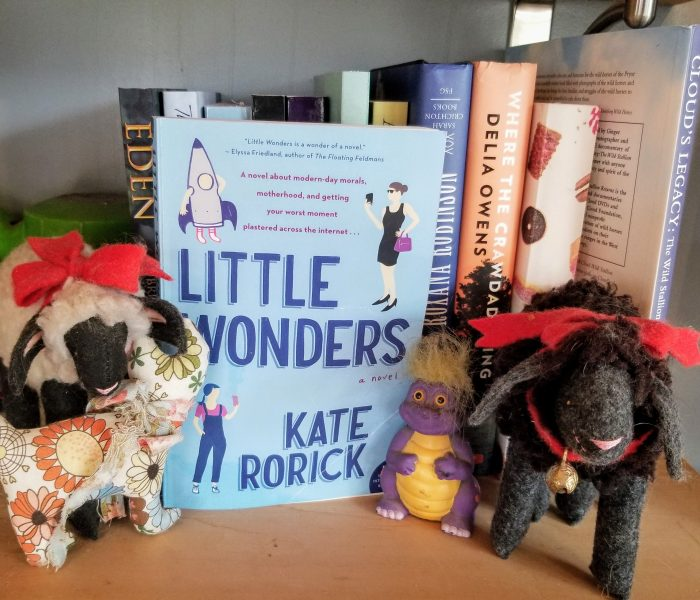 Little Wonders: A Novel by Kate Rorick – Book Review